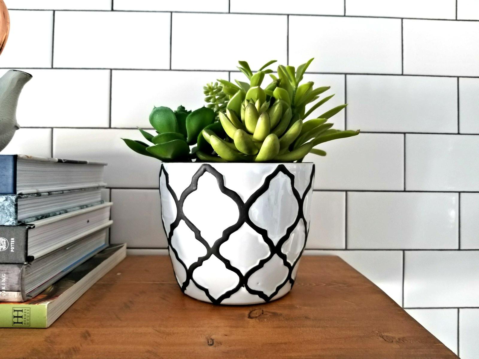 Fake succulent plant